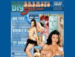 Big Breasbts Sex screenshot