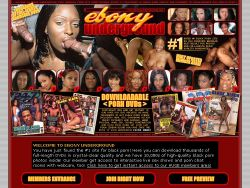 Ebony Undeground screenshot