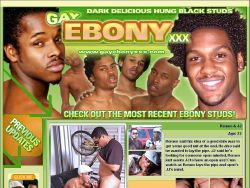 Gay Ebony XXX screenshot